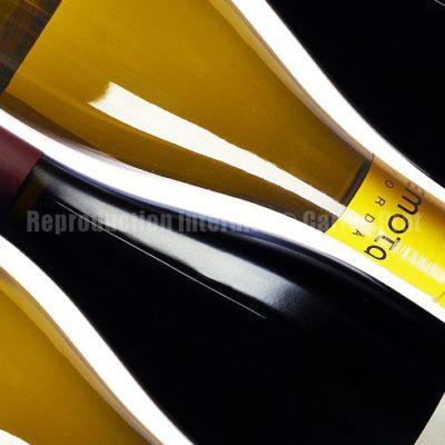Catalogue de vins I / Reproduction interdite © Carles Prat