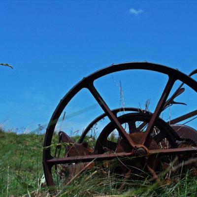 Chariot / Reproduction interdite © Carles Prat