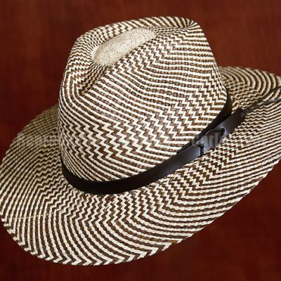 Panama Hat II / Reproduction interdite © Carles Prat