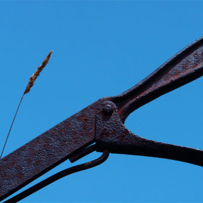 Chariot III / Reproduction interdite © Carles Prat