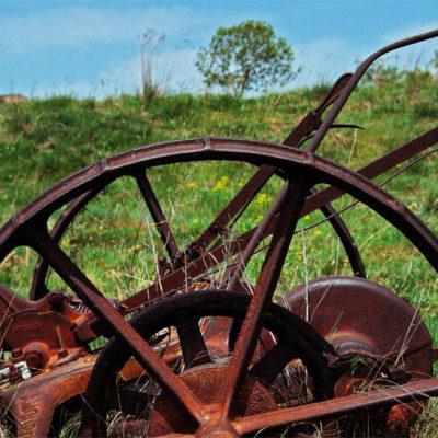 Chariot II / Reproduction interdite © Carles Prat