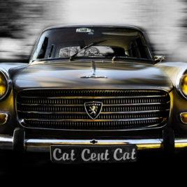 Carles Prat • Cat Peugeot